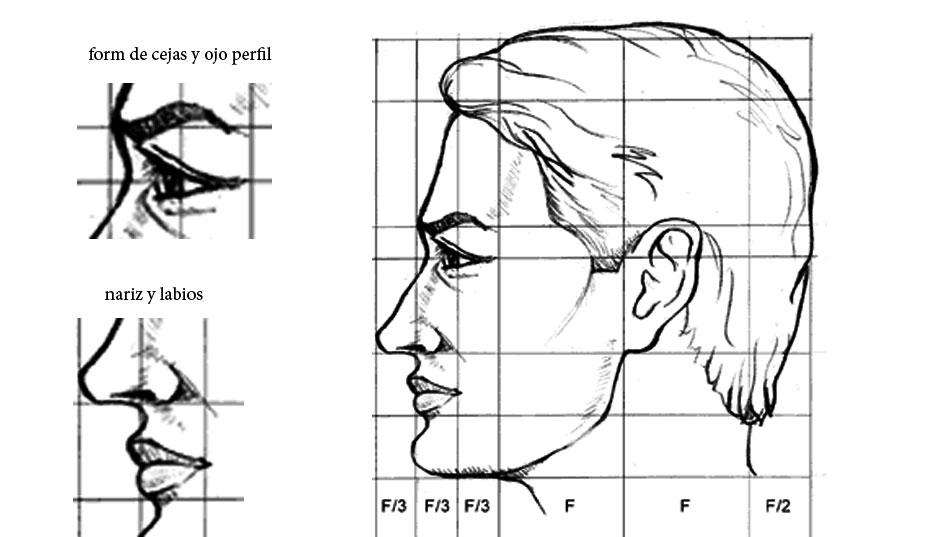 Figura Humana – Adesign